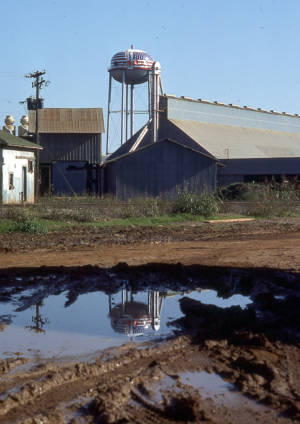 Plains, Georgia 1976
