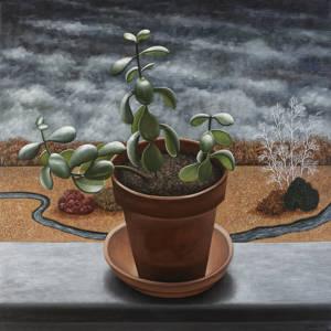 Rubber Plant | 20 x 20