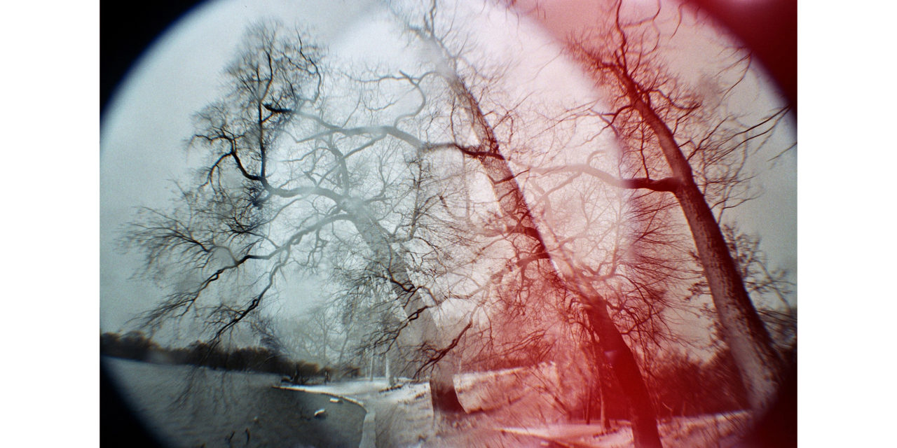 Leah Oates/Photographer